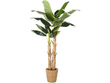 Künstlicher Bananenbaum im Topf