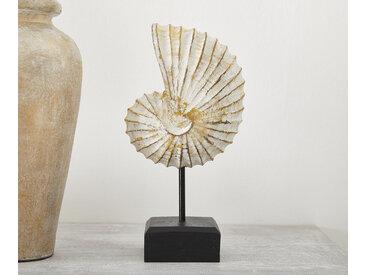 DELIFE Holzdeko Figur Muschel 14x28 cm aus Albasia Holz Weiß, Dekoartikel