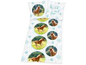 Kinderbettwäsche »Young Collection Pferde«, Herding Young Collection, Öko Tex geprüfte Qualität, weiß