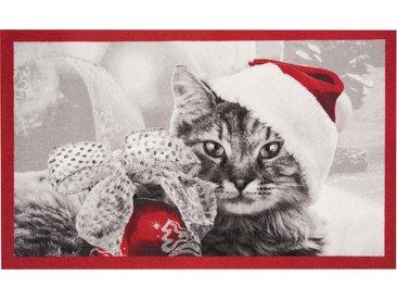 Fußmatte »Christmas Cat«, HANSE Home, rechteckig, Höhe 7 mm, Fussabstreifer, Fussabtreter, Schmutzfangläufer, Schmutzfangmatte, Schmutzfangteppich, Schmutzmatte, Türmatte, Türvorleger, In- und Outdoor geeignet, rot