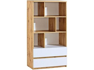 Jugendzimmer - Regal Alard 04, Farbe: Eiche / Weiß - Abmessungen: 151 x 80 x 40 cm (H x B x T)