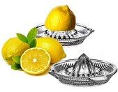Entsafter 2x Zitronenpresse aus Glas mit Ausgießer − manuelle Zitronen, Limetten & Orangen Presse − Zitruspresse Orangenpresse Saftpresse für Zitrusfrüchte (2 Stück)