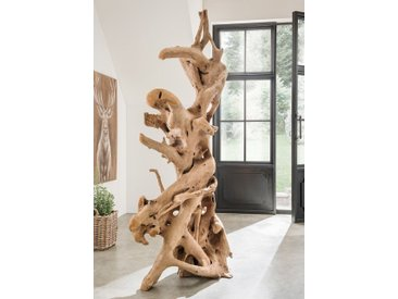 "Unikat-Wurzelskulptur ""Space"" Teak natur"