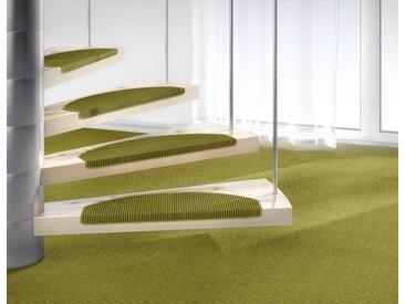 Dekowe Stufenmatte »Mara S2«, halbrund, Höhe 5 mm, 100% Sisal, große Farbauswahl, auch als Set mit 15 Stück erhältlich, grün, 15 St., Avocado