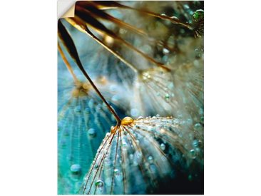 Artland Wandbild »Pusteblume Mystische Schönheit«, Blumen (1 Stück), Wandaufkleber - Vinyl
