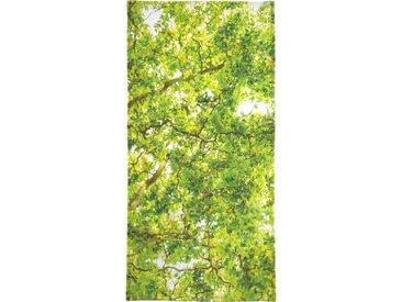 Juniqe Handtuch »Hazel Tree« (1-St), Weiche Frottee-Veloursqualität