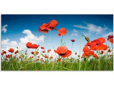 Artland Wandbild »Feld mit Mohnblumen unter Himmel«, Blumenwiese (1 Stück), in vielen Größen & Produktarten - Alubild / Outdoorbild für den Außenbereich, Leinwandbild, Poster