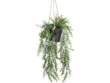 Botanic-Haus Künstliche Zimmerpflanze »Asparagus-Hängeampel«, Höhe 46 cm