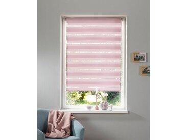 my home Doppelrollo »MARANO«, Lichtschutz, ohne Bohren, freihängend, im Fixmaß, Rollo mit Klemmträger, mit über 3.200 positive Bewertungen, rosa, rosé