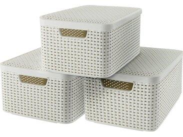 Curver Aufbewahrungsbox »Style Box M« (Set, 3 Stück), creme