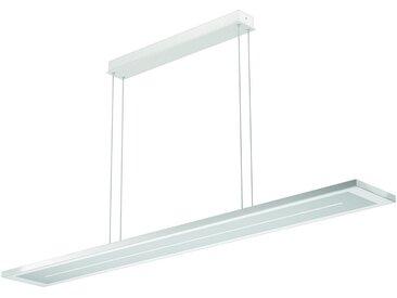 EVOTEC LED Pendelleuchte »ZEN«, LED Hängelampe, LED Hängeleuchte, Farbwechsel, silberfarben, nickelfarben-weiß