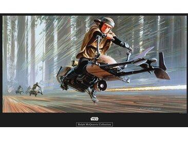 Komar KOMAR Wanddekoration »Star Wars Classic RMQ Endor Speeder«, ohne Rahmen, bunt, 70 cm, bunt