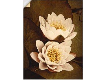 Artland Wandbild »Seerosenblätter Duo«, Blumen (1 Stück), Wandaufkleber - Vinyl