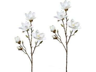Creativ green Kunstblume, Höhe 79 cm, 2er Set, weiß, weiß