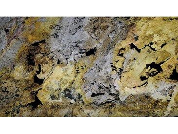 Slate Lite SLATE LITE Dekorpaneele »EcoStone Translucent Falling Leaves«, ES 122x61cm, bunt, bunt
