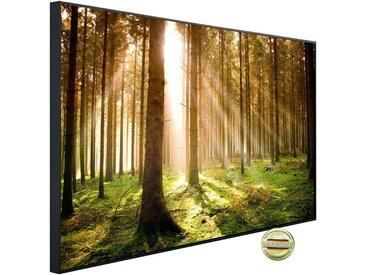 Papermoon PAPERMOON Infrarotheizung »EcoHeat - Autumn Pine Forest«, Aluminium, 1200 W, 100 x 115 cm, mit Rahmen, bunt, bunt