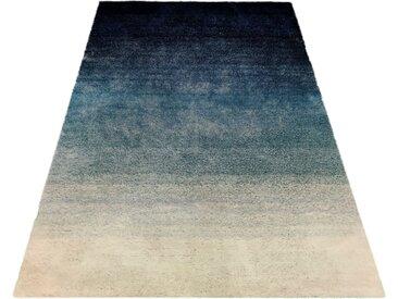 Home affaire Hochflor-Teppich »Isabella«, rechteckig, Höhe 25 mm, Besonders weich durch Microfaser, grün, teal