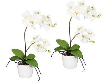 Creativ green Kunstpflanze »Orchidee Phalaenopsis« Orchidee, Höhe 60 cm, im Keramiktopf