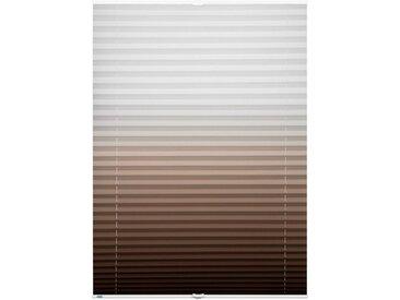 K-HOME Plissee »Farbverlauf«, Lichtschutz, ohne Bohren, verspannt, braun, brown
