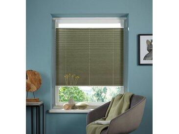 my home Plissee »Dahra«, Lichtschutz, ohne Bohren, verspannt, im Fixmaß, Crushed-Optik, grün, dunkelgrün