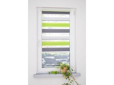 Liedeco Doppelrollo »dreifarbig«, Lichtschutz, ohne Bohren, grün, grün-grau-weiß