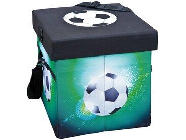 ebuy24 Aufbewahrungsbox »Fabo Aufbewahrungsbox Kühltasche, Hocker, mit Deck«, schwarz, weiss, grün