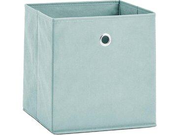 Zeller Present Aufbewahrungsbox (Set, 2 Stück), faltbar und schnell verstaut, grün, grün