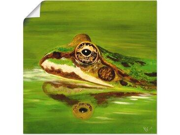Artland Wandbild »Krötengrün«, Wildtiere (1 Stück), Poster