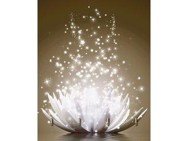 Artland Schlüsselbrett »Vadim Georgiev: Magie der Lotus«, braun, 20x25 cm, Braun