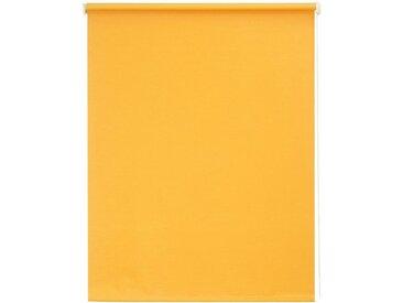 sunlines Seitenzugrollo »Uni«, verdunkelnd, mit Bohren, 1 Stück, orange, mandarine