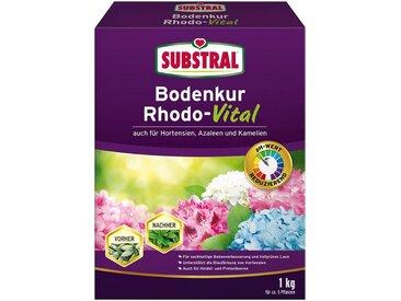 Scotts Substral SUBSTRAL Rhododendrondünger »Bodenkur Rhodo-Vital«, 1 kg, grün, 1 kg, grün
