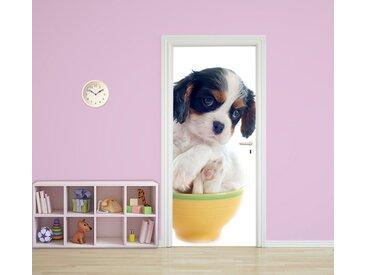 Bilderdepot24 Deco-Panel, Türtapete selbstklebend Tierwelpen in Teetassen Hund 90 x 200 cm Tier Welpe klein niedlich Dog Haustier