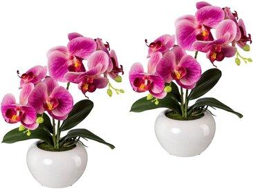Creativ green Kunstpflanze Orchidee, Höhe 35 cm, 2er Set, rosa, rosa