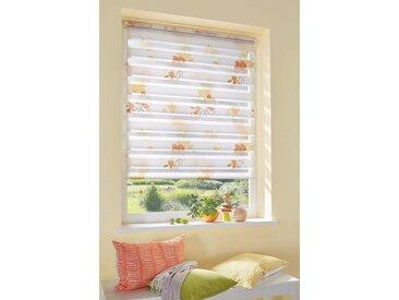 my home Doppelrollo »Damar«, Lichtschutz, ohne Bohren, freihängend, im Fixmaß, orange, apricot