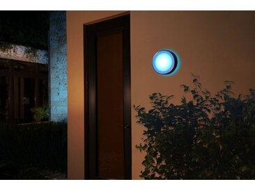 Philips Hue LED Außen-Wandleuchte »Daylo«, silberfarben, aluminiumfarben