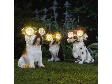 Haushalt International LED Dekoobjekt »LED Solar Leuchte Hund Takko - warmweiße LED - H: 20cm - Grüne Brille - Gartendeko«