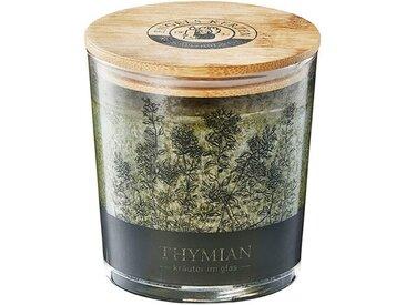 Engels Kerzen Duftkerze »Kräuter im Glas Thymian«