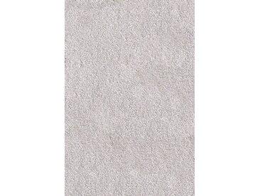 Andiamo ANDIAMO Teppichboden »Levin«, Breite 400 cm, Meterware, hellgrau, grau, hellgrau