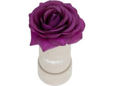 relaxdays Kunstblume »Graue Rosenbox rund 1 Rose«, Höhe 12.5 cm, lila, Lila