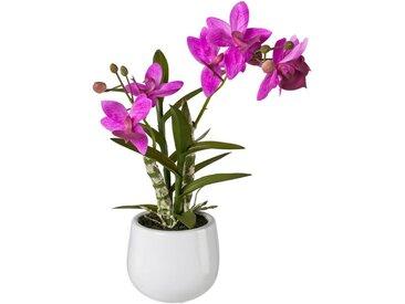 Creativ green Kunstpflanze Orchidee, Höhe 40 cm, Japanorchidee im Keramiktopf, Real Touch, rosa, rosa