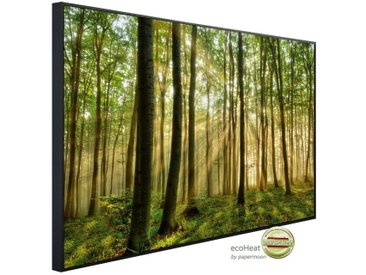 Papermoon PAPERMOON Infrarotheizung »EcoHeat - Wald Morgensonne«, Aluminium, 750 W, 60 x 120 cm, mit Rahmen, bunt, bunt