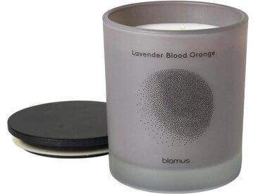 BLOMUS Duftkerze »FLAVO lavender blood orange L«