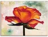 Artland Wandbild »Brillant«, Blumen (1 Stück), in vielen Größen & Produktarten - Alubild / Outdoorbild für den Außenbereich, Leinwandbild, Poster, Wandaufkleber / Wandtattoo auch für Badezimmer geeignet