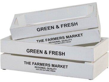 Creativ home Kiste »Green&Fresh« (Set, 2), 2er Set, weiß, weiß