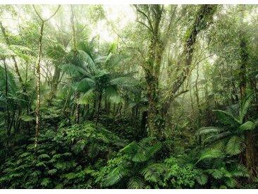 Komar Fototapete »Mindfulness«, glatt, floral, botanisch, bedruckt
