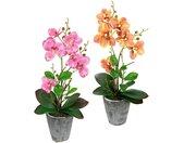 I.GE.A. Kunstpflanze »Orchidee«, Höhe 40 cm, Mit Blättern und Luftwurzeln, im Topf aus Keramik, 2er Set, rosa, rosa-orange