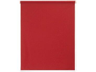 sunlines Seitenzugrollo nach Maß »Start-up Style uni«, Lichtschutz, ohne Bohren, freihängend, Made in Germany, rot, rot