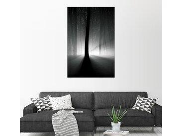 Posterlounge Wandbild, Winterlicht in den Bäumen, Premium-Poster