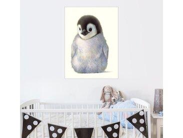 Posterlounge Wandbild, Pinguinküken, Acrylglasbild