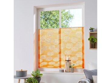 my home Plissee »Belum«, Lichtschutz, ohne Bohren, verspannt, im Fixmaß, orange, terra